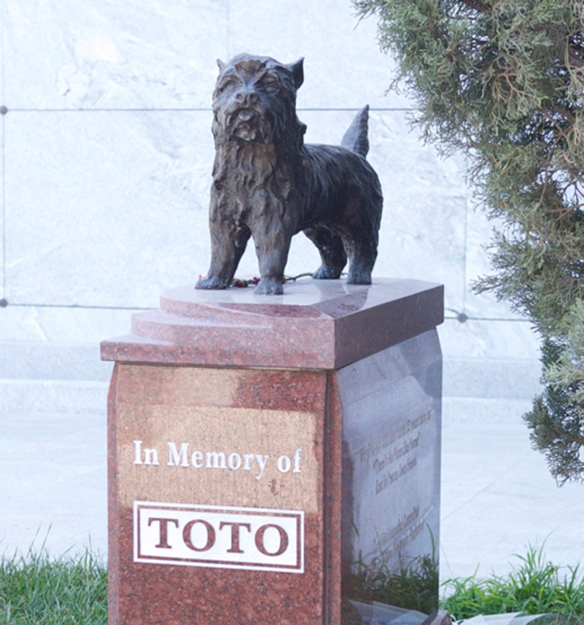 Toto-4-blog